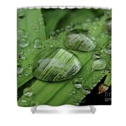 Big Drops Of Rain Shower Curtain