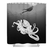 Octopus And Diver - Bw Shower Curtain