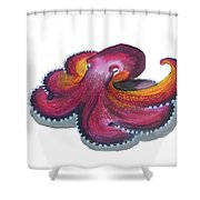 Octopus Dance Shower Curtain