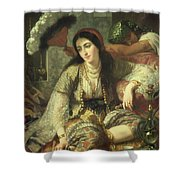 Odalisque Shower Curtain