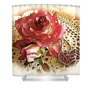 Ode On Dreams Departed  Shower Curtain