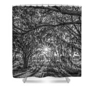 Odessa Sunrise -black And White Shower Curtain