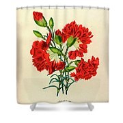 Oeillet Rouge Shower Curtain