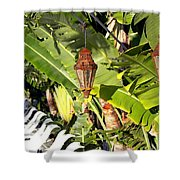 Of Lanterns And Lawn Chairs Shower Curtain