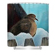 Of Winters Past Shower Curtain