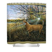 Off The Line Shower Curtain