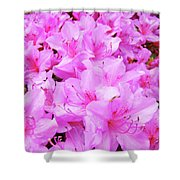 Office Art Azalea Flowers Botanical 31 Azaleas Giclee Art Prints Baslee Troutman Shower Curtain