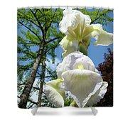 Office Art Giclee Prints White Yellow Iris Flowers Irises Baslee Troutman Shower Curtain