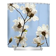 Office Art Prints Blue Sky White Magnolia Flowers 38 Giclee Prints Baslee Troutman Shower Curtain