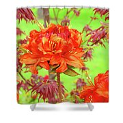 Office Art Prints Orange Azalea Flowers Landscape 13 Giclee Prints Baslee Troutman Shower Curtain