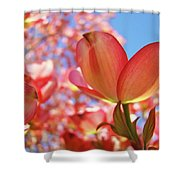 Office Art Prints Pink Dogwood Tree Flowers 4 Giclee Prints Baslee Troutman Shower Curtain
