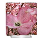 Office Art Prints Pink Flowering Dogwood Tree 1 Giclee Prints Baslee Troutman Shower Curtain
