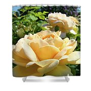 Office Art Prints Rose Peach Orange Rose Flower Baslee Troutman Shower Curtain