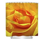Office Art Prints Roses Orange Yellow Rose Flower 1 Giclee Prints Baslee Troutman Shower Curtain