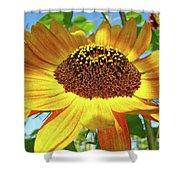 Office Art Prints Sunflowers Giclee Prints Sun Flower Baslee Troutman Shower Curtain