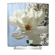 Office Art Prints White Magnolia Flower 66 Blue Sky Giclee Prints Baslee Troutman Shower Curtain