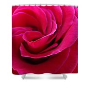Office Art Rose Spiral Art Pink Roses Flowers Giclee Prints Baslee Troutman Shower Curtain