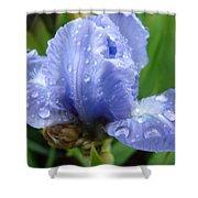 Office Art Wet Blue Iris Flower Floral Giclee Baslee Troutman Shower Curtain
