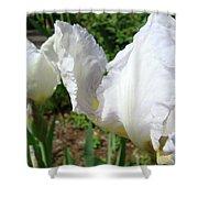 Office Art White Iris Flowers Giclee Art Prints Irises Baslee Troutman Shower Curtain