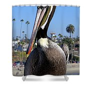 Official Greeter Photograph Shower Curtain