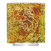 14-offspring While I Was On The Path To Perfection 14 Shower Curtain
