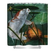 Oh Boy More Koi Shower Curtain
