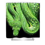 Oh So Green Viper Shower Curtain