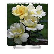Oh So Pretty Roses Shower Curtain
