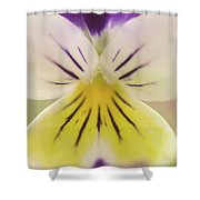 Oh Violet Nature Photo Shower Curtain
