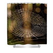 Oh What Tangled Webs.... Shower Curtain