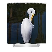 Oh Yea Thats The Spot Shower Curtain