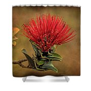 Ohia Lehua Flower Volcanos National Park Shower Curtain