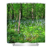 Ohio Wildflowers In Spring Shower Curtain