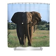 Okay - We Are Going Now Shower Curtain