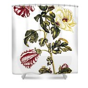 Okra Shower Curtain