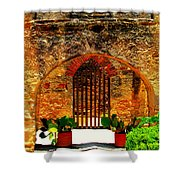 Old Archway  Shower Curtain