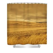 Old Barn In The Wheat Field Shower Curtain