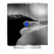 Old Blue Eyes Is Back Shower Curtain