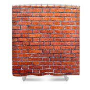 Old Brick Wall Shower Curtain