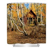 Old Cabin In The Aspens Shower Curtain