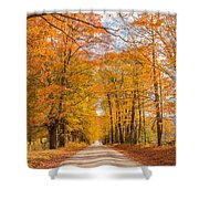 Old Coach Road Autumn Shower Curtain