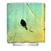 Old Crow Medicine Show Shower Curtain