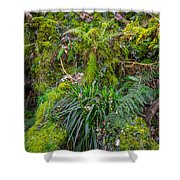 Old Disused Quarry Shower Curtain