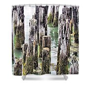 Old Dock Remains Shower Curtain
