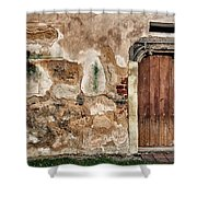 Old Door. Shower Curtain