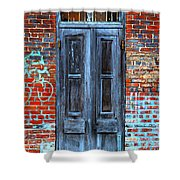Old Door With Bricks Shower Curtain