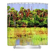 Old Florida Loop Palms Shower Curtain