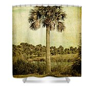 Old Florida Palm Shower Curtain