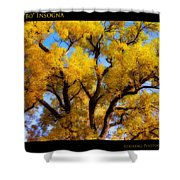Old Giant  Autumn Cottonwood Orton Shower Curtain