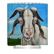 Old Goat - Painting By Cindy Chinn Shower Curtain